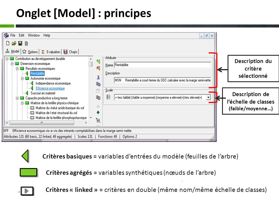 Onglet [Model] : principes